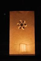 Candlebags model